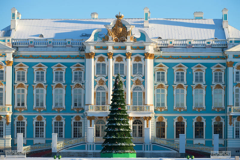 Christmas tree on the background of the main building of the Catherine Palace. Winter in Tsarskoye Selo. Saint Petersburg, Russia royalty free stock images