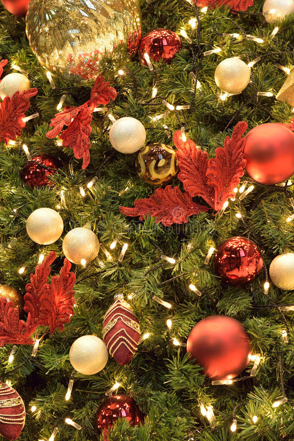 Download Christmas Tree Background In Vertical Frame Stock Photo