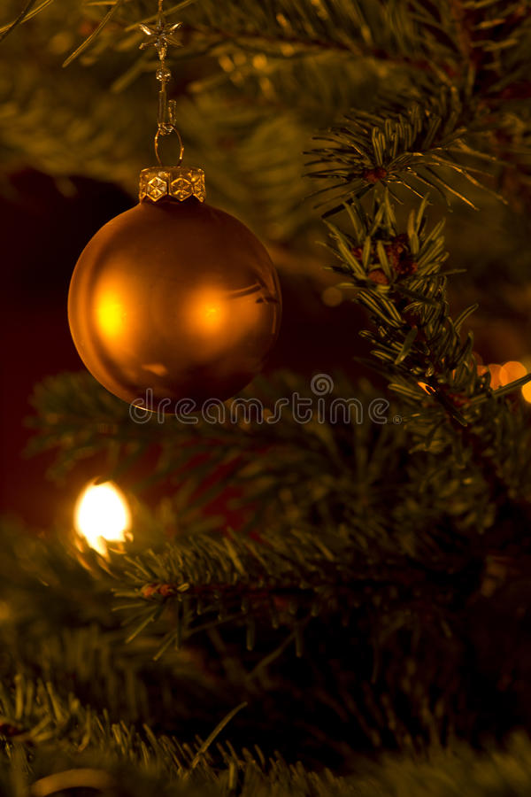 Christmas tree. With a Christmas decoration royalty free stock photography