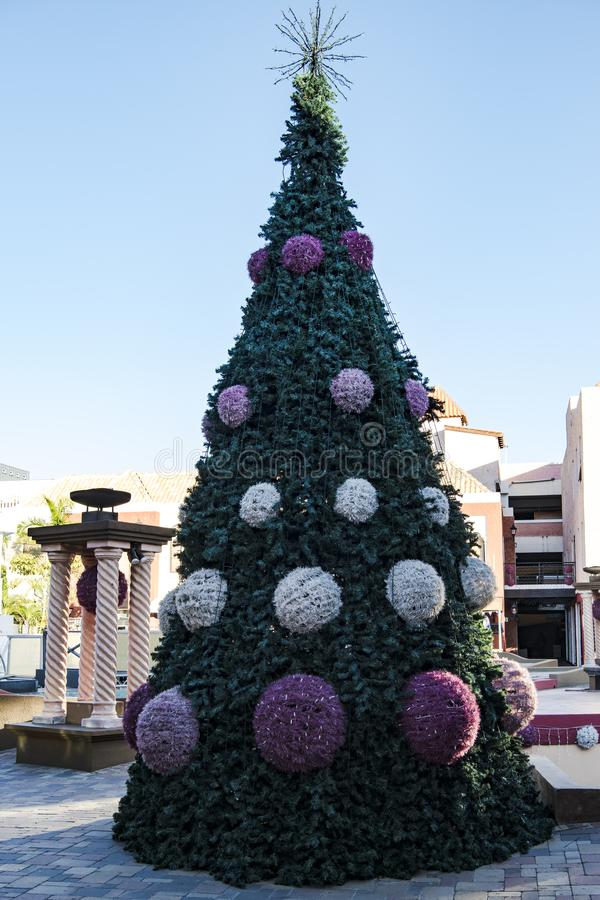 Christmas tree on tropic island Aruba, Caribbean Sea. Christmas tree with Balls of light in Aruba. Aruba, Lesser Antilles, constituent country of the Kingdom of stock photography