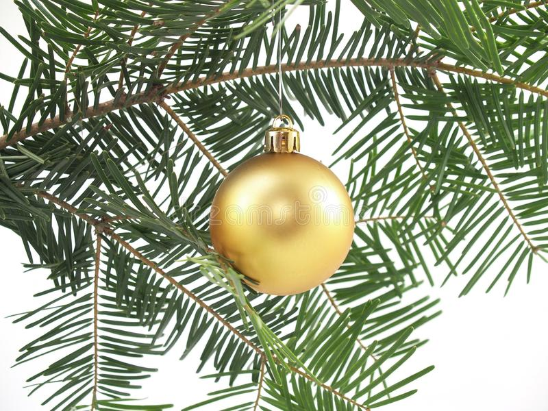 Download Christmas tree and bauble stock photo. Image of hung - 11000438
