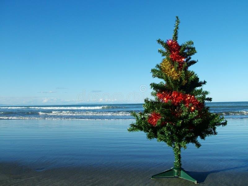 Christmas tree on the beach royalty free stock photos