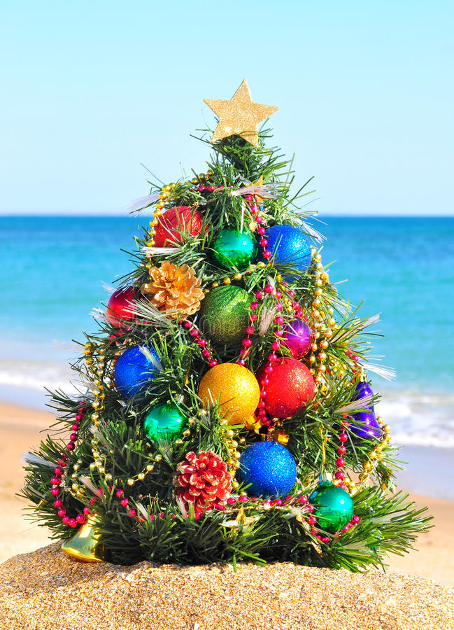 Christmas tree in the beach stock photo image 27413050 for How did the christmas tree come about
