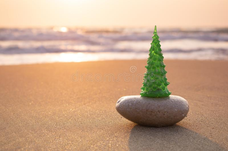 Christmas tree on the beach, sandy sea shore. Christmas and New Year celebration travel concept. stock images
