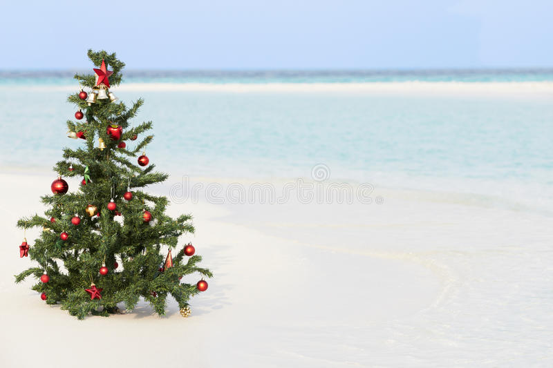 Download Christmas Tree On Beautiful Tropical Beach Royalty Free Stock Photography - Image: 30329157