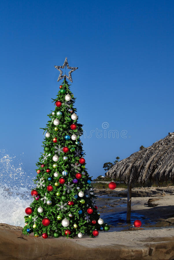 Download Christmas Tree On Beautiful Tropical Beach Thatched Palm Palapa Stock Photo - Image of california, background: 34556088