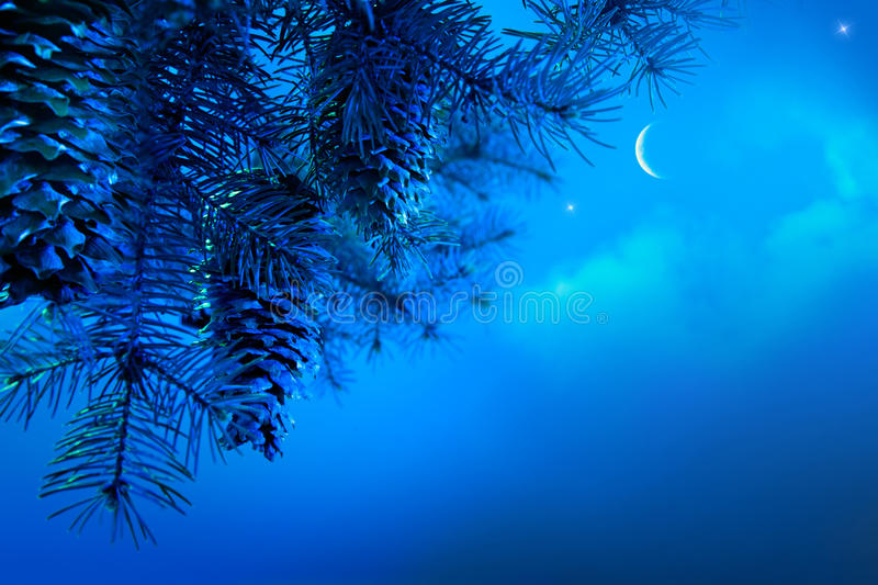 Download Christmas Tree On A Blue Night Sky  Background Stock Photo - Image: 21944872