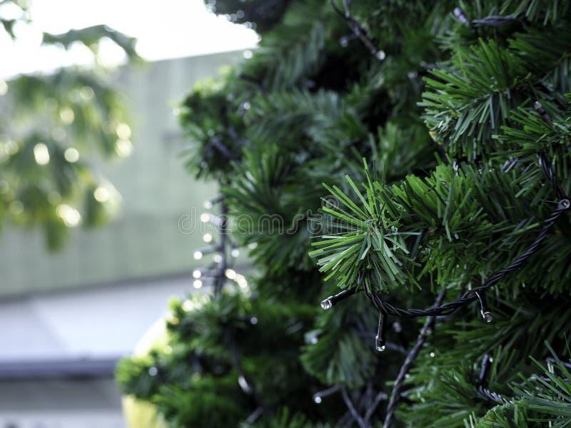 Christmas tree on blue sky stock photography