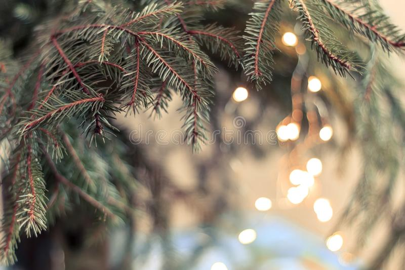 Christmas tree on blurred background. Happy new year and Merry Christmas background. Christmas tree on blurred background stock image
