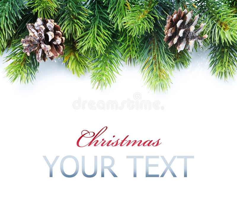 Christmas Tree Border. Evergreen Christmas Tree Border over White stock image