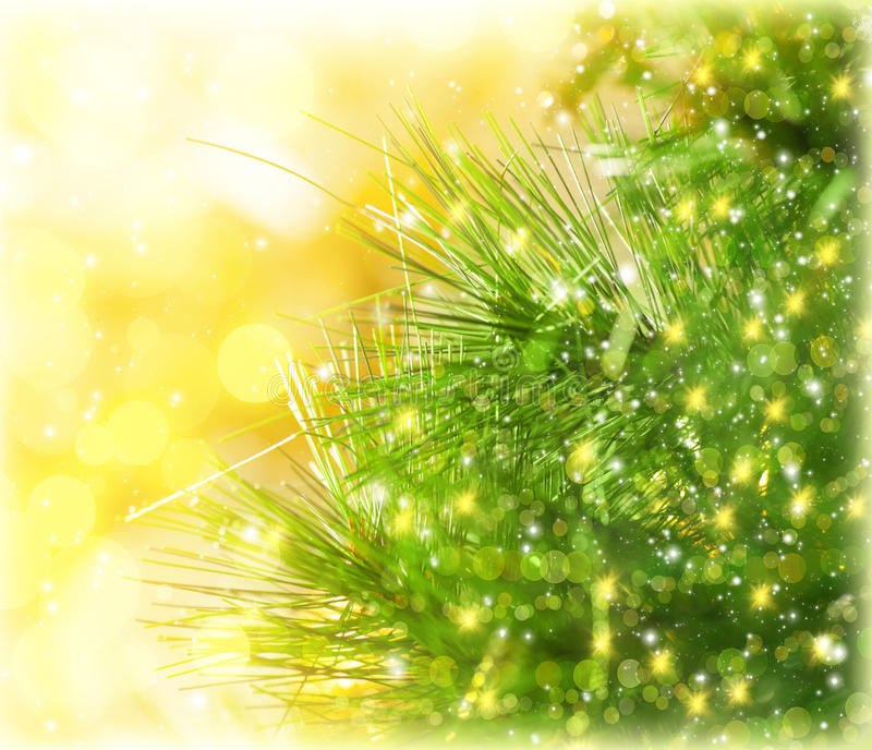 Christmas tree border. Image of Christmas tree border, green fir branch isolated on yellow blurred background, Christmastime decorations, fresh pine tree twig stock photos