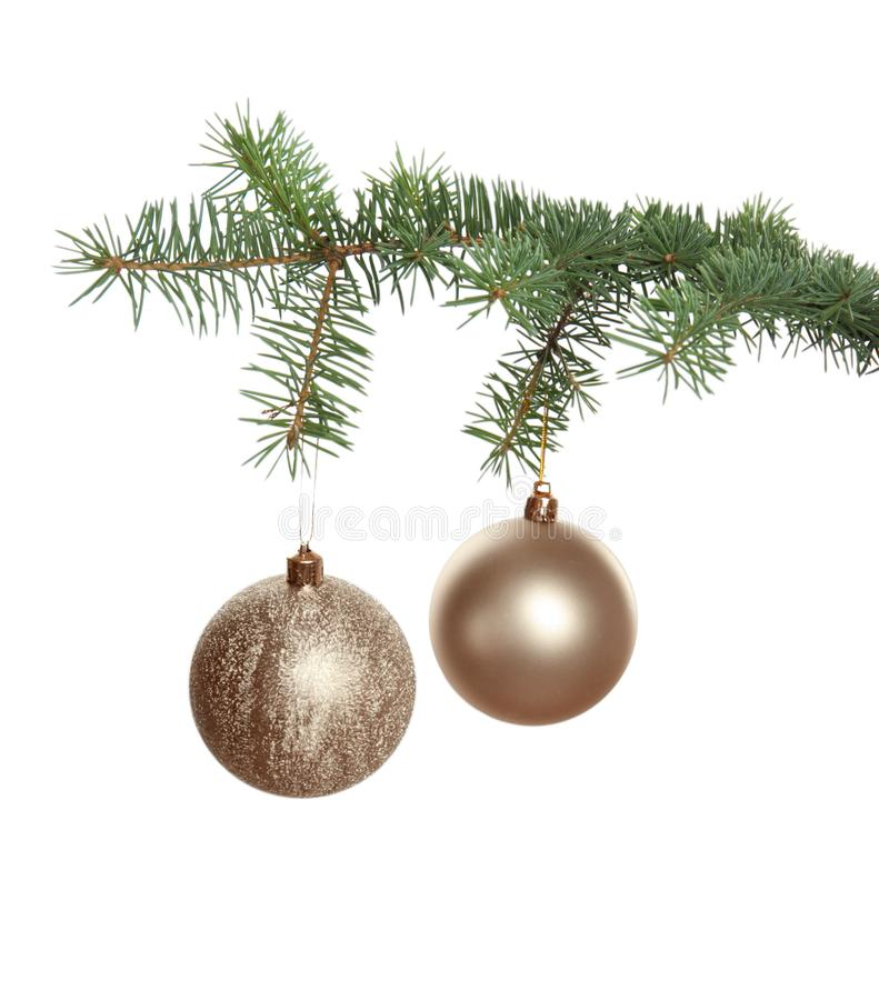 Christmas tree branch with balls stock images