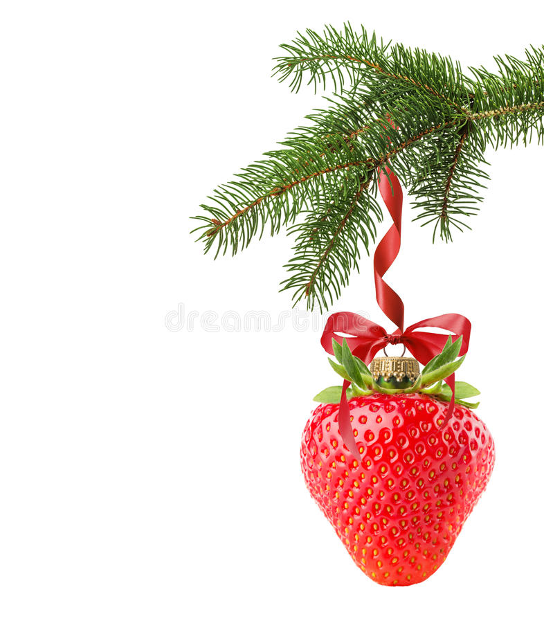 Christmas tree branch with Christmas ball in shape of strawberry royalty free stock photography