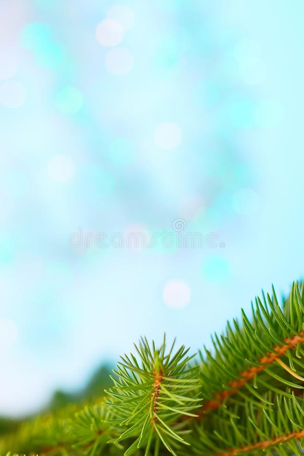 Christmas tree branch frame, blue bokeh background. Christmas tree branch postcard frame, blue and turquoise bokeh texture background copy space stock photo