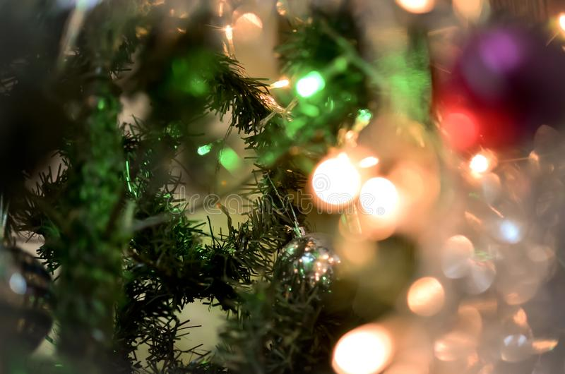 Christmas tree branch with glowing lights royalty free stock photo