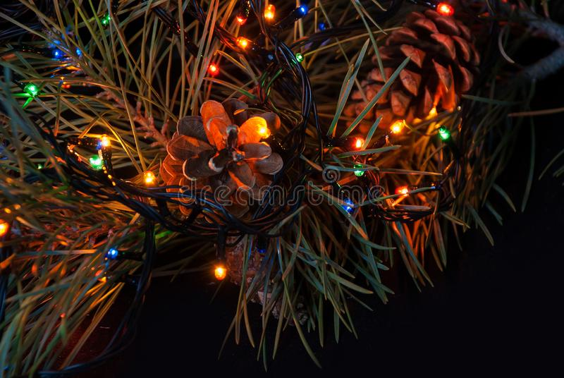 Christmas tree branch and lights. Christmas tree branch and lights stock photography