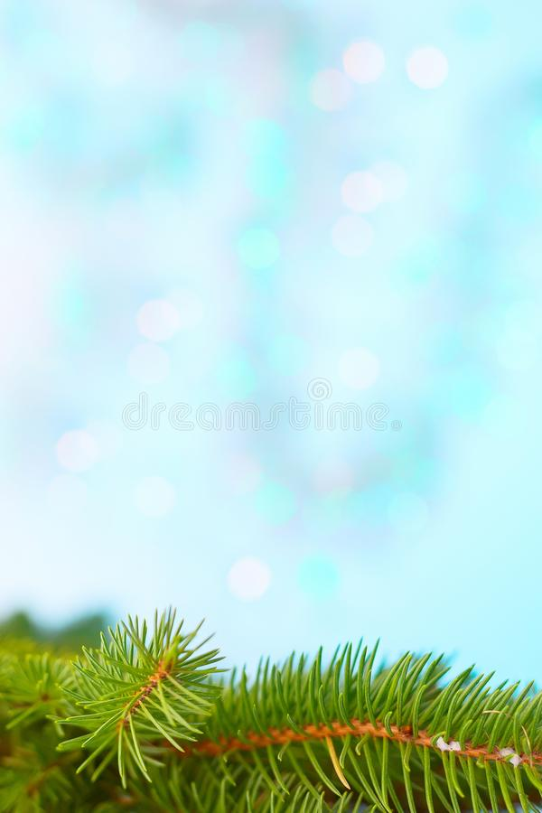 Christmas tree branch frame, blue bokeh background. Christmas tree branch postcard frame, blue and turquoise bokeh texture background copy space royalty free stock photos