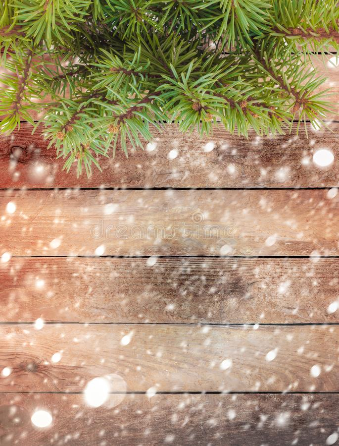 Christmas tree branch on snow-covered wooden background stock photo