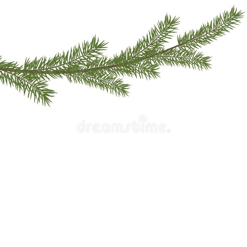 Christmas tree branche in the corner. Green fir tree branch vector illustration