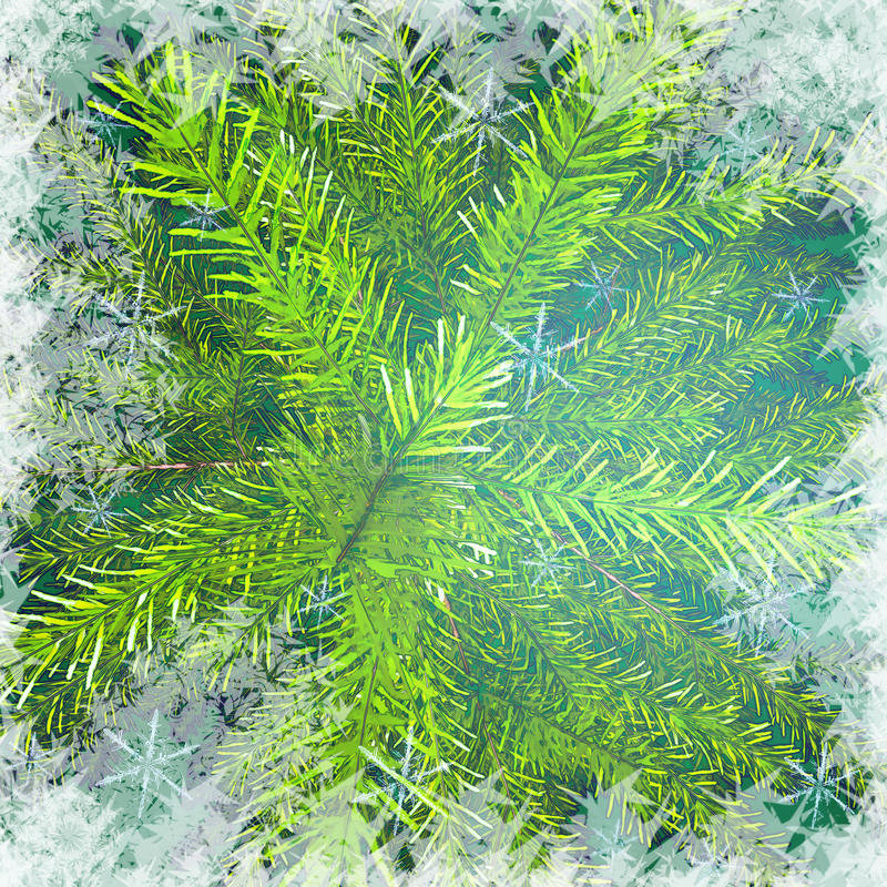 Christmas tree branches against snow background. stock illustration