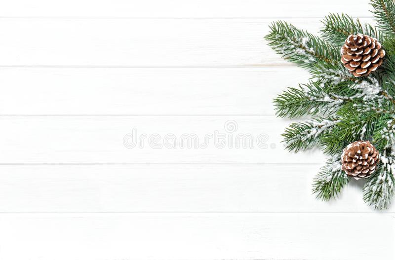 Christmas tree branches cones Winter holidays royalty free stock photos