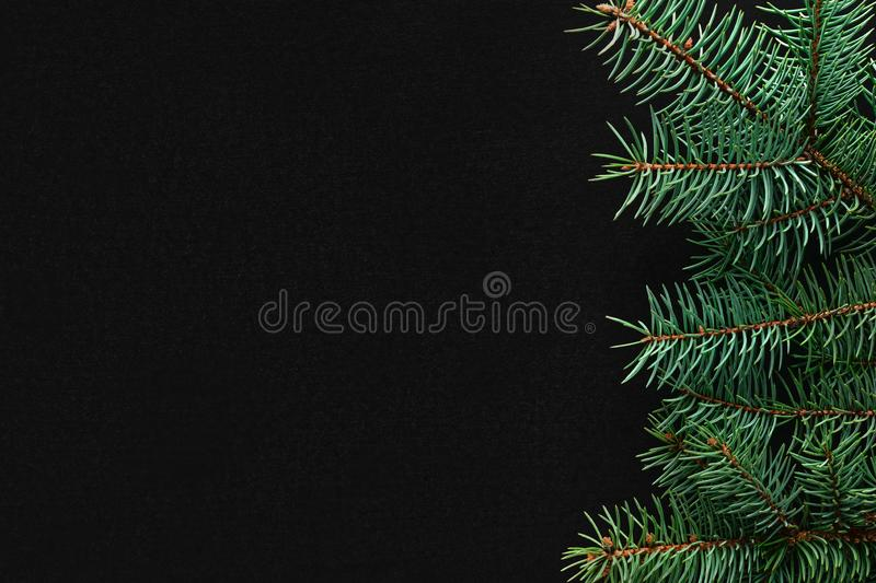Christmas tree branches on the right side on black board background. Copy space, flat lay, view form above royalty free stock photography