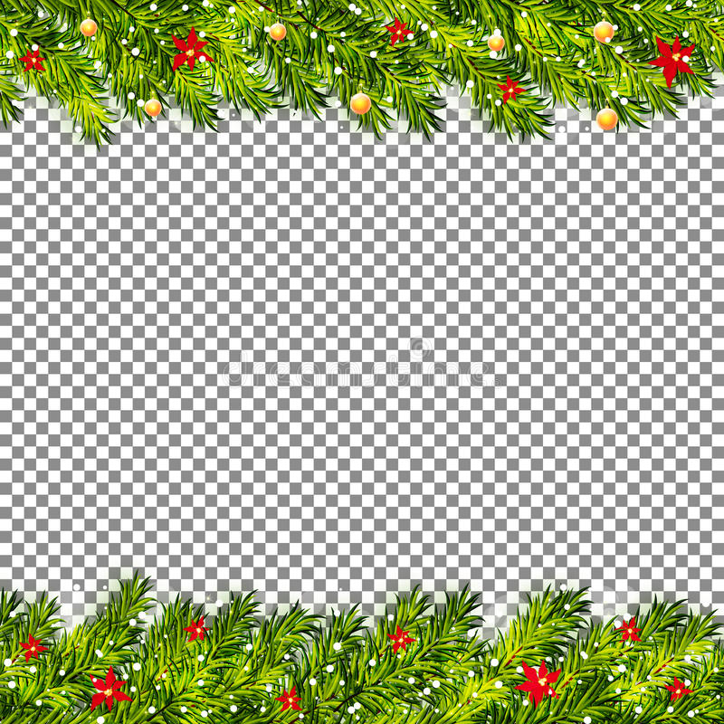 Christmas tree branches on transparent background vector royalty free illustration