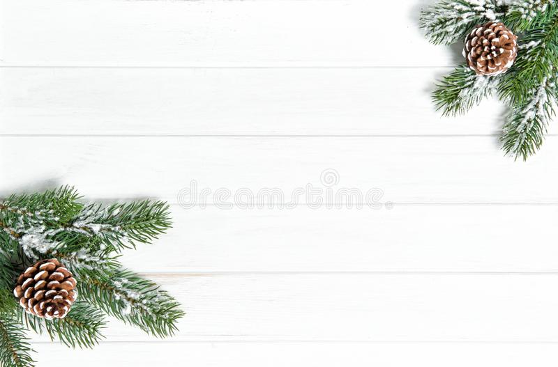 Christmas tree branches Winter holidays royalty free stock images