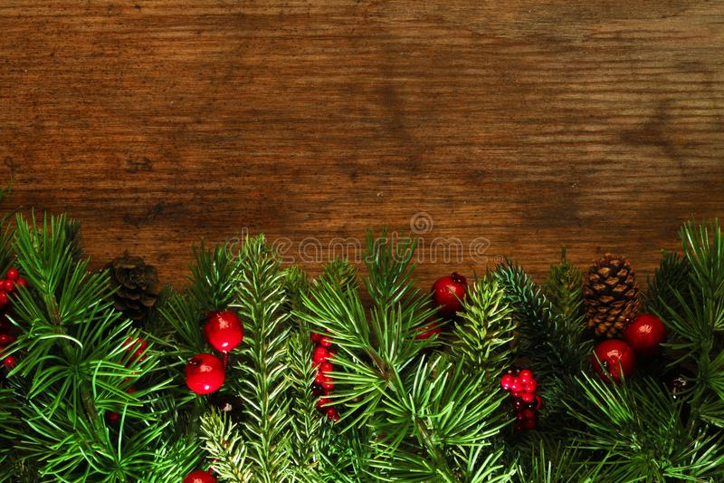 Christmas tree branches background royalty free stock photography
