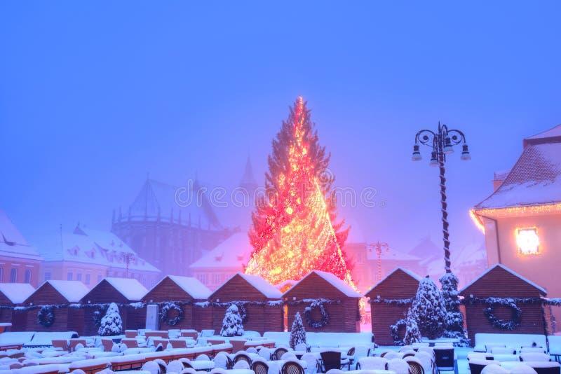 Download Christmas Tree In Brasov, Transylvania Stock Photo - Image: 83723423