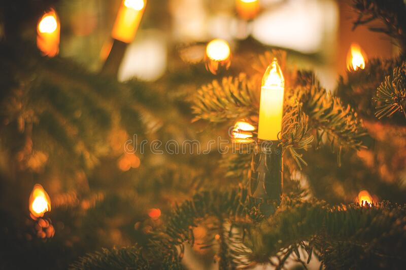 Christmas Tree With Candles Free Public Domain Cc0 Image