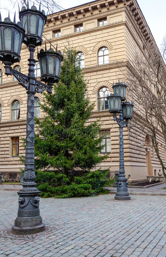 Christmas tree in the city. Near Parlament building royalty free stock image