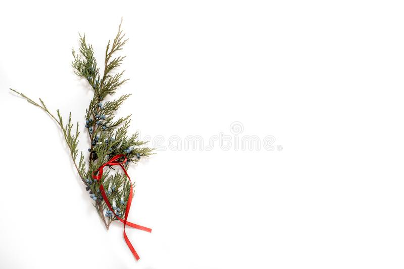 Christmas Tree with Cones border on a White background. New Year holiday evergreen tree, Xmas green art corner design. Branches of. Christmas Tree with Cones stock image