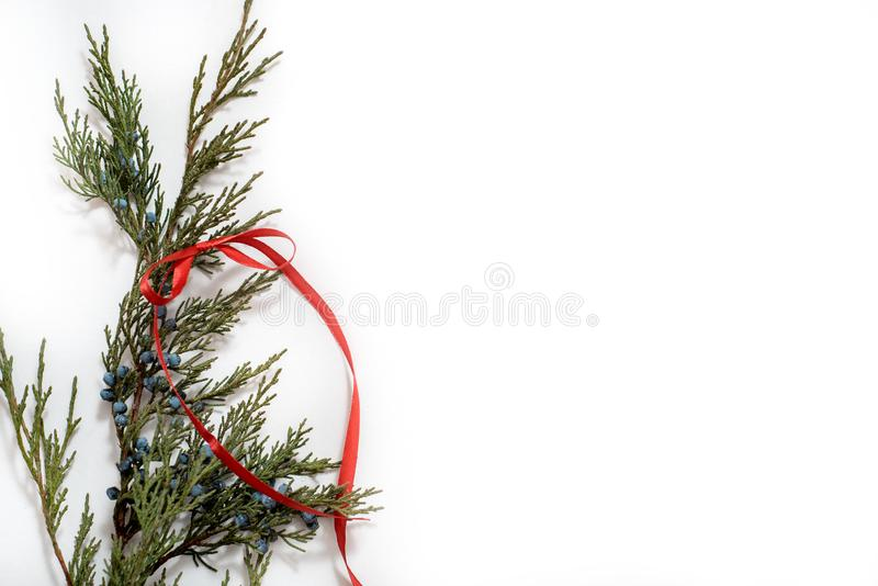 Christmas Tree with Cones border on a White background. New Year holiday evergreen tree, Xmas green art corner design. Branches of. Christmas Tree with Cones stock images