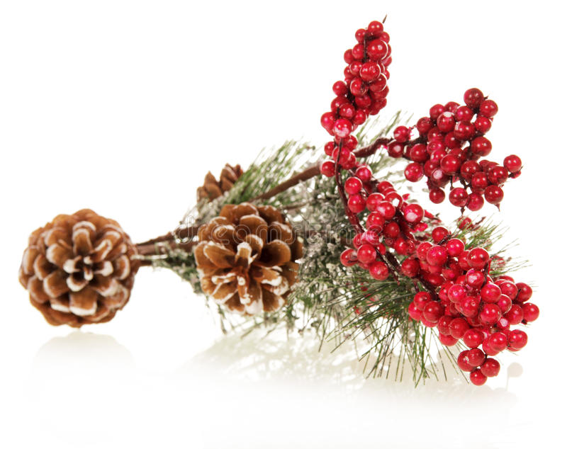 Download Christmas Tree Decorated With Pine Cones And Snow Stock Image - Image: 35834531