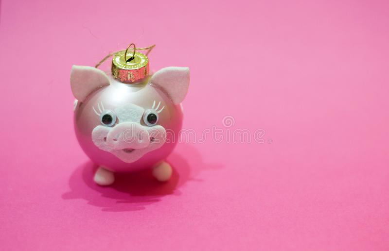 Christmas tree decoration in shape of pig with white nose and ears on pink background. Concept of Chinese New 2019 year, symbol, stock images