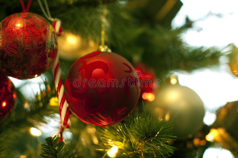 Download Christmas tree decorations stock image. Image of balls - 12100719