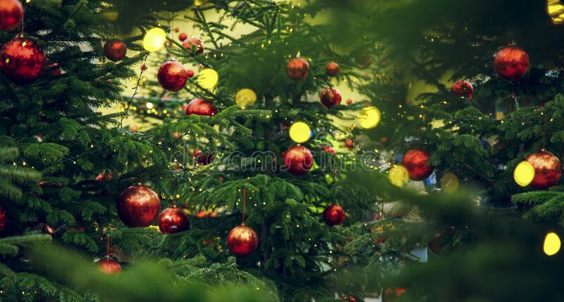 christmas tree festive decoration green background red ball toys holidays atmosphere wallpaper concept picture 195918230