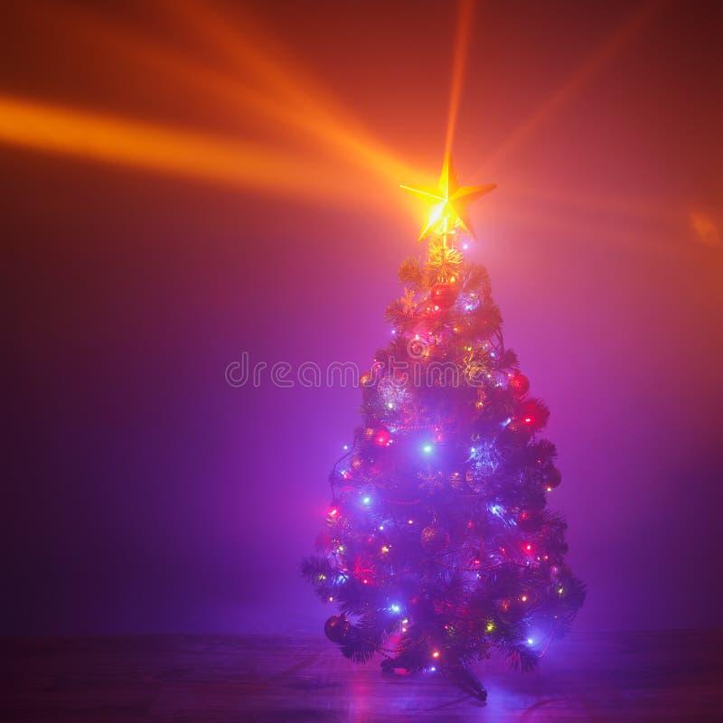 Christmas tree with festive lights, purple background stock photos