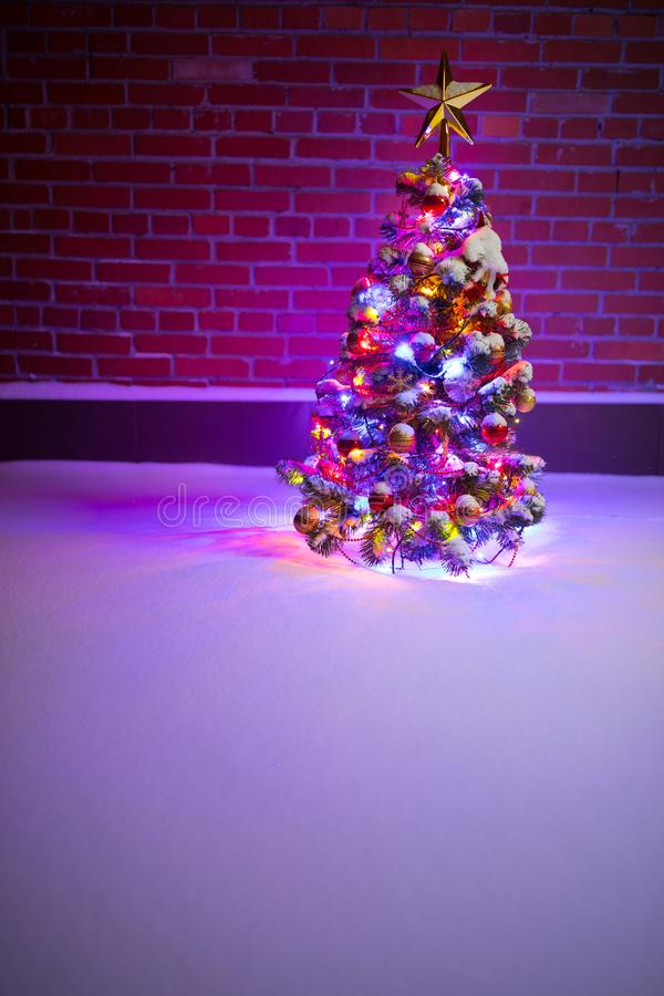 Christmas tree with festive lights in snow outdoors, purple brick wall background stock photography