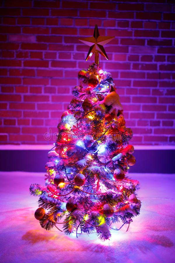 Christmas tree with festive lights in snow outdoors, purple brick wall background royalty free stock images