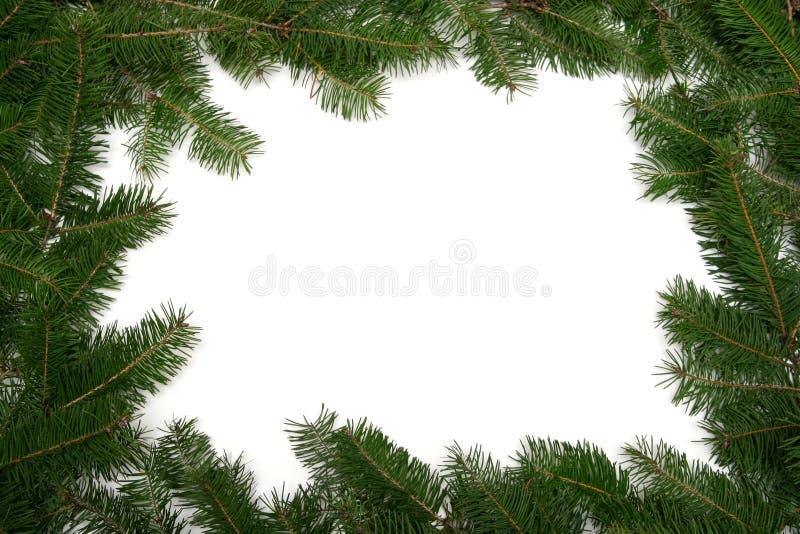 Christmas tree frame royalty free stock photo