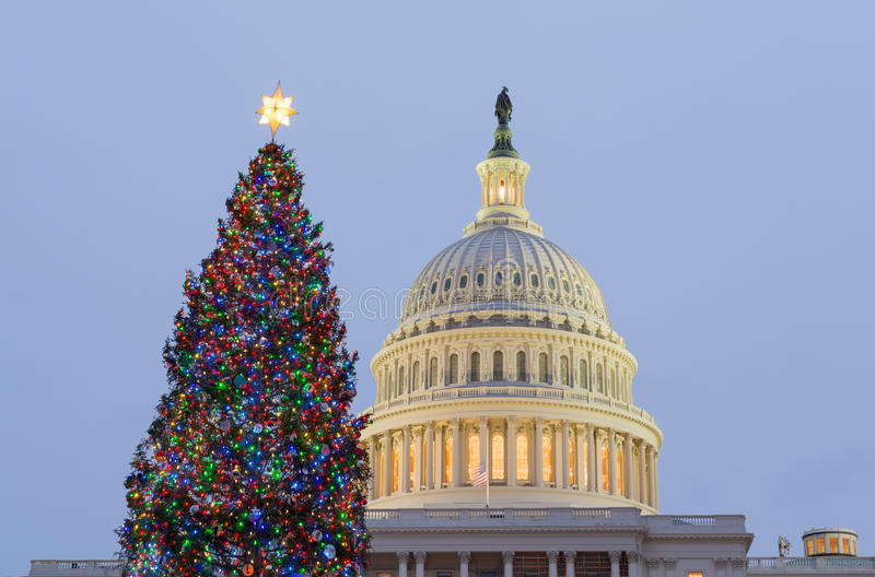 Download Christmas Tree In Front Of Capitol Washington DC Stock Photo - Image: 28308676