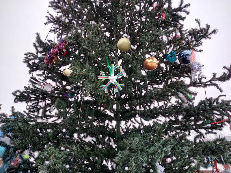 Tree, gift, holiday, green, toys, elegant, coniferous, beautiful, new year, winter, cold, christmas, fun, joy, vacation, holidays, royalty free stock photos