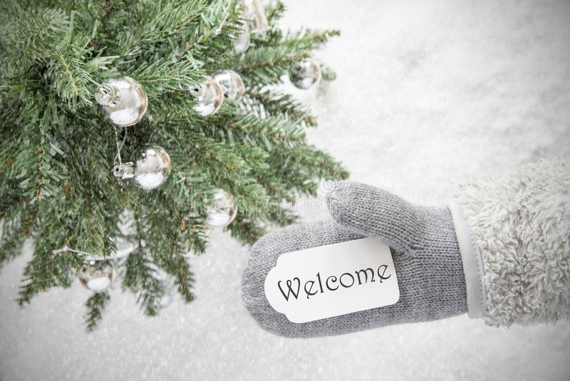 Christmas Tree, Glove, Text Welcome, Snowflakes. Glove With Label With English Text Welcome. Green Christmas Tree With Silver Balls On Snow In Background stock photos