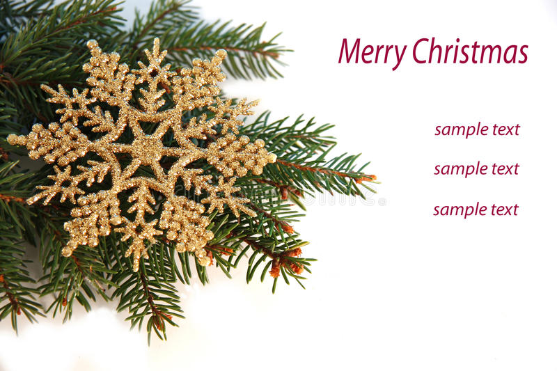 Christmas tree with golden flakes royalty free stock photo