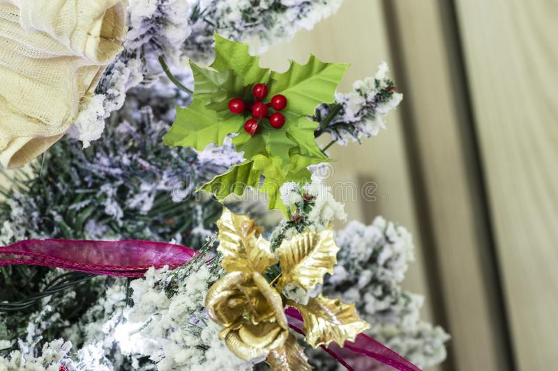 Christmas tree in the house royalty free stock image