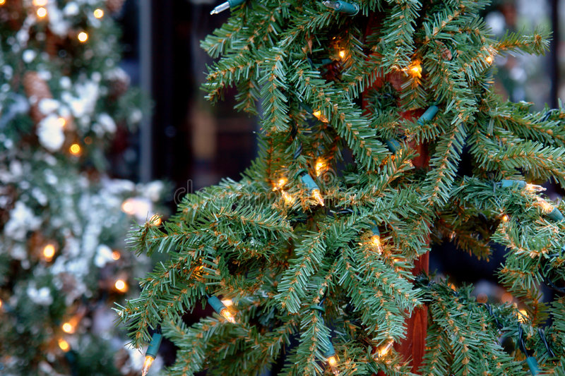 Christmas tree with lights. Snow covered tree in the background royalty free stock image