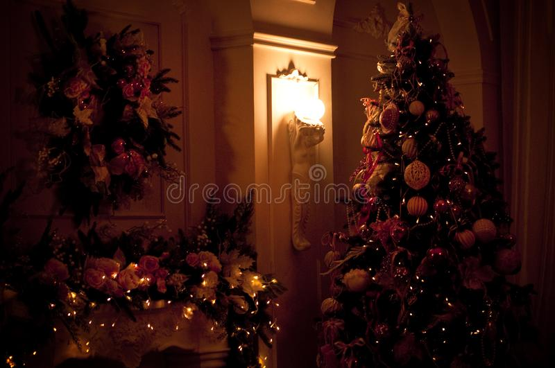 Christmas tree with lights. New Year`s Eve royalty free stock image