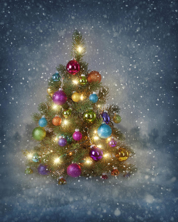 Christmas tree with lights royalty free stock image